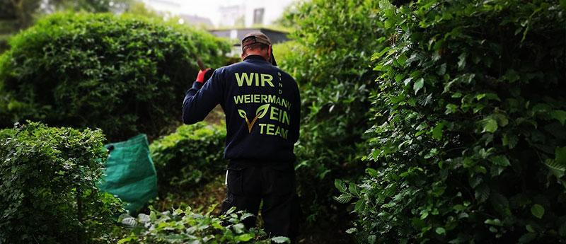 Gartenpflege in Lüdenscheid